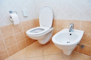 Why You Should Have a Wall-Hung Toilet Installed
